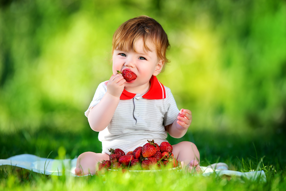 Guest post – 5 Healthy Foods Even Your Children Will Love