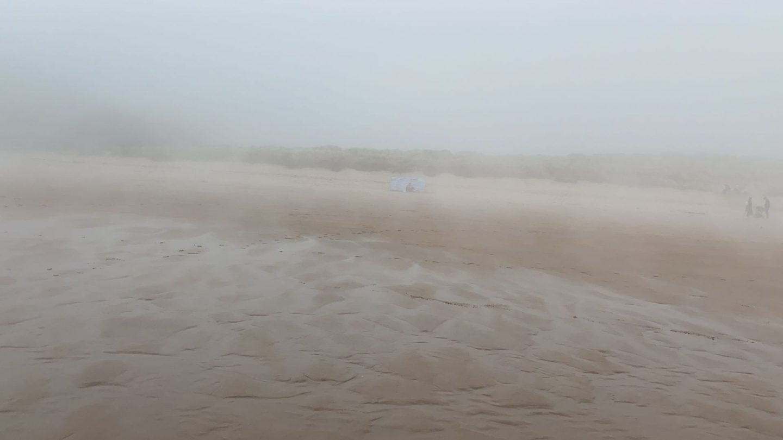 Tyninghame Beach - jojo fraser mojo